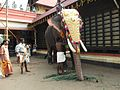 Harippad temple 2011 ulsavam 08.jpg