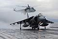 Harriers Leave HMS Ark Royal For Final Time MOD 45152139.jpg