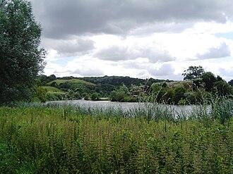 Whitchurch Lock - View from near Gatehampton downstream towards Harts Lock Woods
