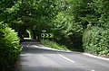 Haslemere Road - geograph.org.uk - 21562.jpg