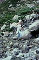 Hautes-Alpes Vers Les Lacs de Crupillouse Randonneuse 081978 - panoramio - rene boulay (3).jpg