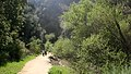 Heading Into The Narrows at Towsley Canyon - Santa Clarita, California (3360647097).jpg