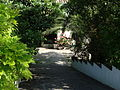 Hermosa vegetación a la entrada de la Casería de la Sartenilla.JPG