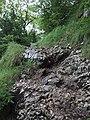 Hike to La Dent du Chat & Le Molard Noir (15370587646).jpg