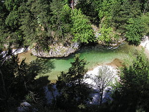 Schwarza (Leitha) - The Schwarza in the Höllental