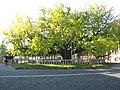 Hongan-ji National Treasure World heritage Kyoto 国宝・世界遺産 本願寺 京都186.JPG