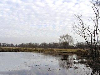 Hopton Fen Suffolk Wildlife Trust nature reserve