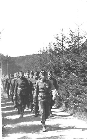 Denmark–Hungary relations - Hungarian soldiers in Denmark, April 1945.