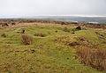 Hut circle on Holne Moor near Venford.jpg