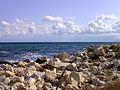 III. Schwarzes Meer Küste bei Sweti Konstantin Bulgarien .JPG