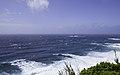 Ilha das Flores P5260099 (35199708773).jpg