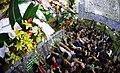 Imam Ali shrine - 1 May 2015 20.jpg