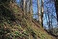 In the wood - panoramio (1).jpg