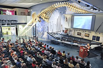 Nantucket Whaling Museum - Image: Inside Whaling Museum during Lecture