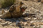 Integrated Training Exercise 2-15 150125-F-RW714-351.jpg