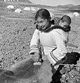 "Inuit woman ""Josie"" scraping sealskin, Kinngait, Nunavut Josie, une femme inuite, gratte une peau de phoque à Kinngait, au Nunavut (30694460224).jpg"