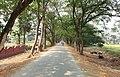 Inwa (Ava), Mandalay 08.jpg