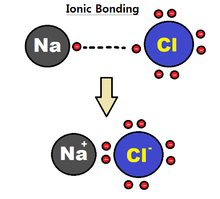 Structural biochemistry chemical bonding ionic interaction