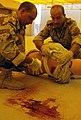 Iraqi medics participate in coalition forces training program DVIDS95982.jpg