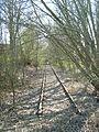 Itzehoe Bahntrasse-Itzehoe-Wrist April-2009 SL270555.JPG