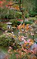 Japanese Garden (16045107592).jpg