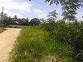 Jardim Bom Retiro - panoramio (2).jpg