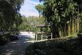 Jardin japonais Compans Caffarelli 2011, maison du thé.JPG