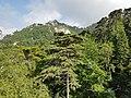 Jardins da Quinta da Regaleira em Sintra (37140389611).jpg
