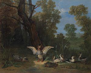 Canards se reposant au soleil