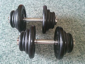 """Weight plate - A pair of adjustable dumbbells with """"standard"""" plates"""
