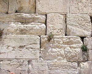 Jerusalem stone - Jerusalem stone (Western Wall, Jerusalem).