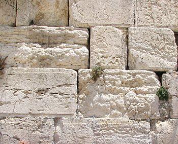 Kvadroŝtonŝtonoj de la Muro de lamentadoj