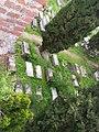 Jewish cemetery (Pisa) 223.jpg