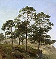Joachim Frich - Study of Trees - NG.M.04187 - National Museum of Art, Architecture and Design.jpg
