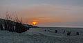 Juist, Strand -- 2014 -- 3438.jpg