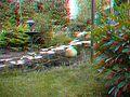 Kürbis im 3D Garten - panoramio.jpg