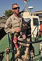 K-9 Duty at Port of Djibouti DVIDS167982.jpg