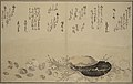 KITAGAWAUtamaro Sea shells & short poems book.jpg