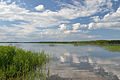 Kaiavere järv.JPG