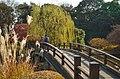 Kami-no-ike(upper pond), Shinjuku Gyoen(Shinjuku Imperial Garden) - 上の池, 新宿御苑 - panoramio (1).jpg