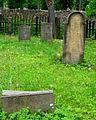 Kamienna Góra, cmentarz żydowski (Aw58)DSCF7702.jpg