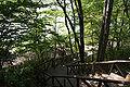 Karuizawa Taliesin05s3872.jpg