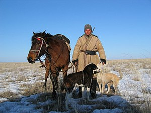 Kazakh shepard with alabays