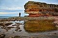 Kocaeli Kandıra Pembe kayalar 1 DSC4896.jpg