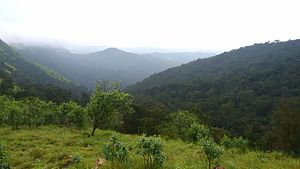Kodachadri - Kodachadri hills seen from the top of the mountain near to Inspector bungalow