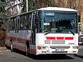 Kralupy nad Vltavou, autobus MHD Plavání.jpg