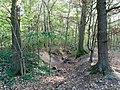 Krefeld Forstwald Reste der Landwehr (Schlacht auf der Kempener Heide) 2.jpg