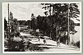 Kuikonniemi, Vanhan ja uuden harjutien risteys, Palovartijan mäki, Pöllänlampi, Mustalahti, Albin Aaltonen 1950s PK0361.jpg