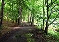 Kunratický Forest south, Prague Kunratice.jpg