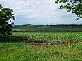 L327, Moldova - panoramio (1).jpg